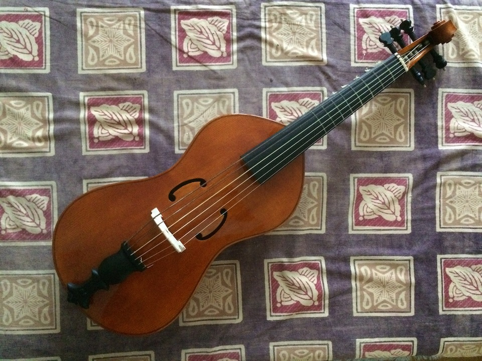 Tenor viol after Antonio Brensio (Bologna, 1612?), currently in the collection of the Castello Sforzesco, Milan.  Quilted maple and black oxidised oak.