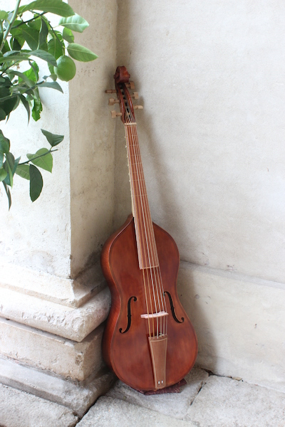 Bass viol after Gasparo da Salò